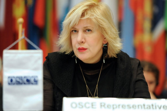 OSCE media freedom representative expresses concern that UK legal provision could have damaging impact on the country's press