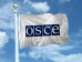 OSCE media freedom representative condemns shooting of news photographer